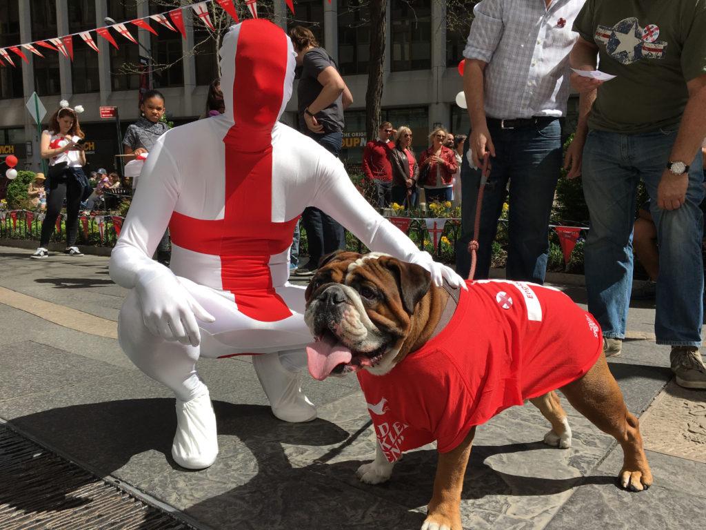 Morph Suit & Dog